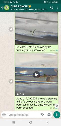 Screenshot_20200526-151638_WhatsApp