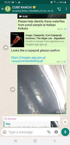 Screenshot_20200526-152423_WhatsApp