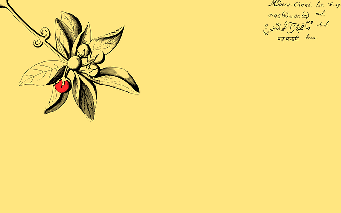 Hortus Malabaricus Wallpaper