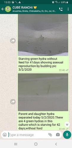 Screenshot_20200526-150309_WhatsApp