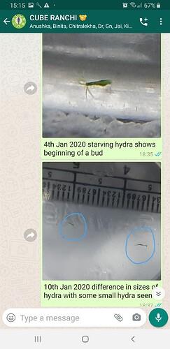Screenshot_20200526-151555_WhatsApp